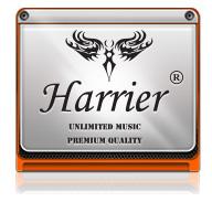 �յ������� Harrier Classic Beyond The Time